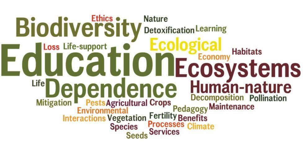 O que não fazer na Educação Ambiental de Empresas