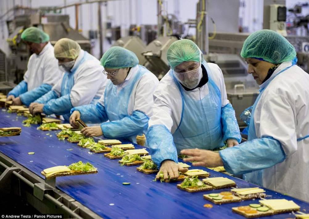 Funcionários realizando a montagens de sanduíches em um Layout de produção