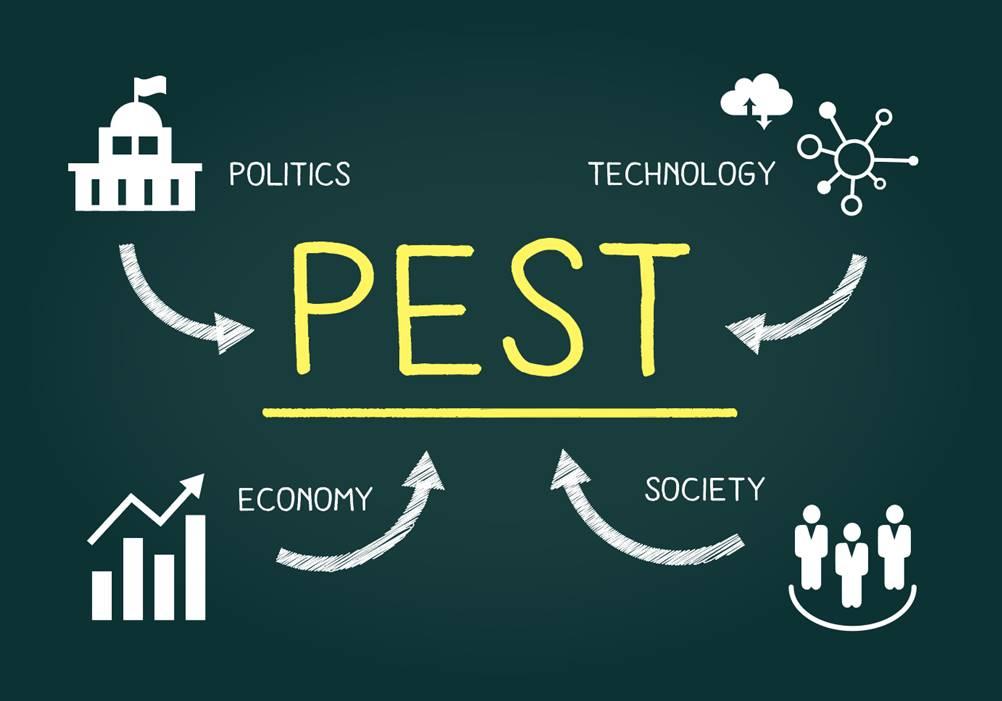 Análise PEST: Entenda o que é e como fazer